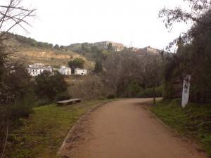 Camino del Avellano en Granada